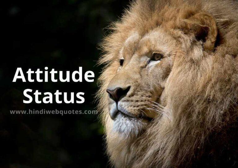Attitude Status & Attitude Shayari in Hindi
